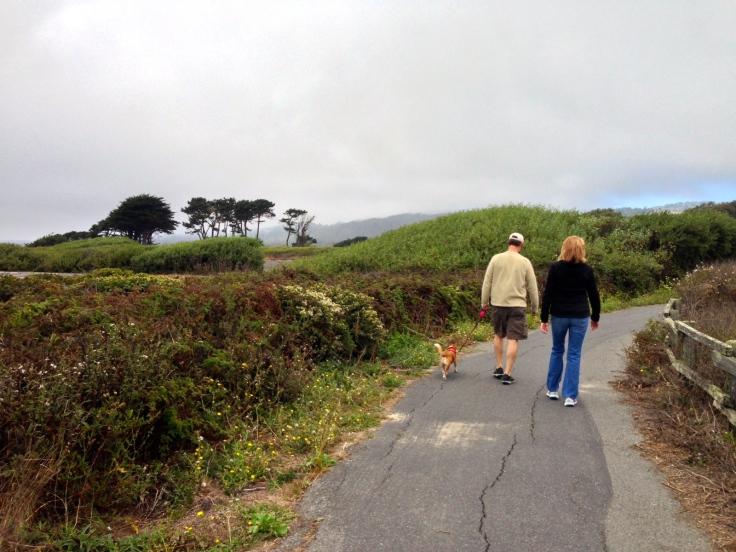Bike Trail on Half Moon Bay State Beach