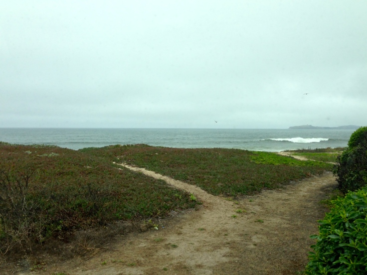 View from our site at Half Moon Bay State Beach
