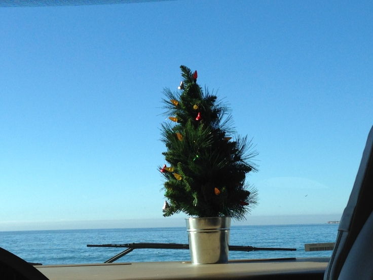 Seacliff Christmas Tree
