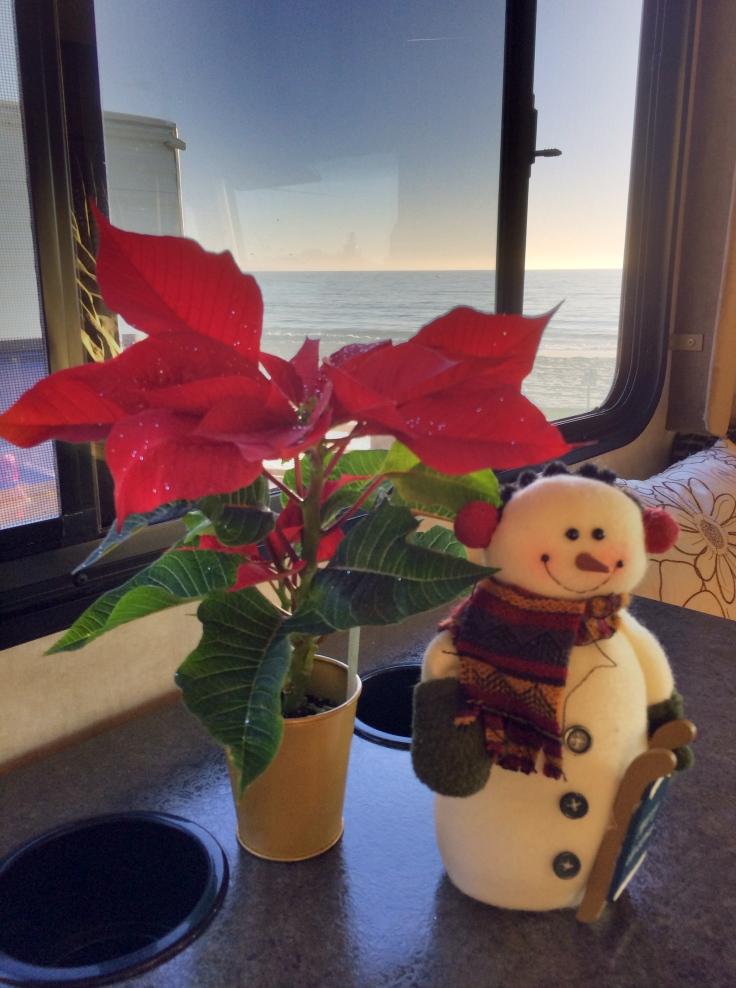 Seacliff Christmas